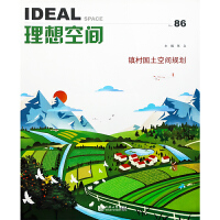 理想空间系列丛书86集 本期主题:镇村国土空间规划 同济大学主编 城市规划设计书籍