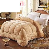冬季羊羔绒被子柔加厚保暖冬被芯学生单人双人棉被+