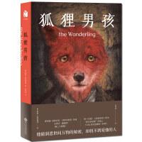 狐狸男孩 米拉.巴尔托克 著 他能洞悉世间万物的秘密却找不到爱他的人 外国文学长篇小说现当代文学小说青春文学
