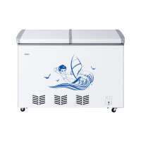 Haier 海尔 BC/BD-272SE(白色) 272升 冷藏冷冻转换柜 冷柜 大冷冻力