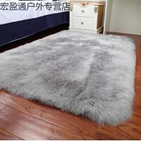 加厚长毛绒地毯卧室客厅床边满铺地毯飘窗垫现代简约毛绒橱窗定做SN6056 浅灰色 长毛绒(圆角)