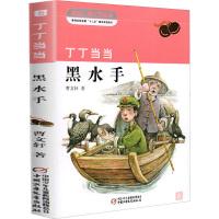 丁丁当当黑水手 中国少年儿童新闻出版总社(中国少年儿童出版社)