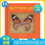 【预订】POP-UP Butterflies 蝴蝶 英文原版进口儿童书 3-6岁幼儿英语启蒙 趣味互动立体书