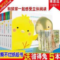 正版小鸡球球成长系列图画书全套6册精装宝宝绘本日本儿童绘本图书0-1-2-3-4岁婴幼儿读物幼儿园指定和