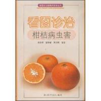看图诊治柑桔病虫害,张权柄 等,四川科学技术出版社9787536449503