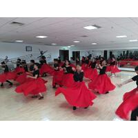 蒙古族舞蹈练习裙半身长裙新疆维族练功大摆裙舞蹈服女装