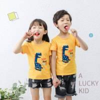童装男童短袖T恤韩版纯棉上衣圆领儿童卡通服装小孩宝宝打底半袖
