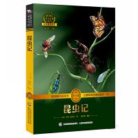 昆虫记 人教版教材八年级上必读 (新课标必读 彩绘插图 全书导读 无障碍阅读 全彩印刷)