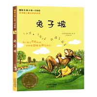 兔子坡 注音版-国际大奖小说注音版儿童读物7-10岁 拼音读物一年级必读经典书目二三年级课外阅读必读注音版小学生课外阅