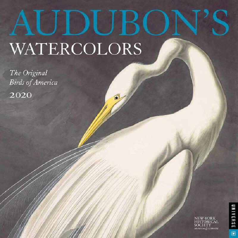 英文原版 奥杜邦鸟类水彩画2020年挂历 纽约历史学会博物馆出品 艺术日历 礼品周边 Audubon's Watercolors 2020 Wall Calendar