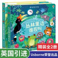 Usborne奇妙点读发声书 花园里边谁在唱+丛林里边谁在叫全2册 有声音的故事绘本0-3-6岁宝宝益智玩具书籍 儿童