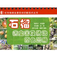 石榴病虫害及防治原色图册
