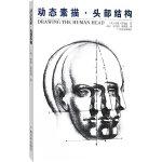动态素描・头部结构(中文简体字版)