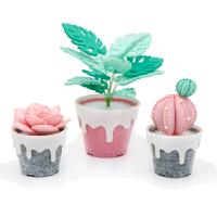 多肉植物�M合盆栽 花盆不�布�手工diy 制作 ��意材料包