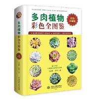 多肉植物彩色全图鉴,王意成 张华,水利水电出版社9787517051961