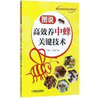图说高效养中蜂关键技术 机械工业