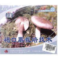 褐口蘑栽培技术(1片装)VCD( 货号:103508000100307)