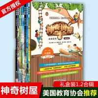 正版神奇树屋故事系列基础版1.2辑礼盒装中文版全套书籍 儿童读物3-4-6-9-12岁少儿 四五六年级小学生课外阅读媲