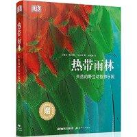 现货 包邮DK Tropical Rainfores DK热带雨林:失落的野生动植物乐园 DK大百科热带雨林动植物全书