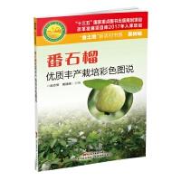 番石榴优质丰产栽培彩色图说(金土地新农村书系)