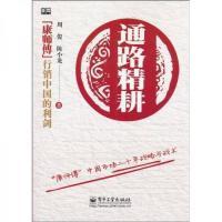 通路精耕:康师傅中国市场二十年战略与战术【正版特惠】