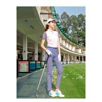 高尔夫女装女夏套装女士裤子千鸟格女裤动休闲弹力短袖golf球服装 套装