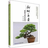 松树盆景造型与养护技艺 徐昊 编