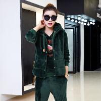 春装新款天鹅绒休闲运动套装女两件套宽松大码金丝绒运动服卫衣