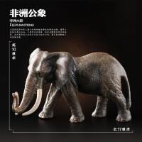 全新仿真动物模型套装玩具动物老虎狮子大象长颈鹿 儿童玩具SN8726