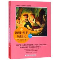小学生名家经典快乐阅读书系(六):汤姆・索亚历险记