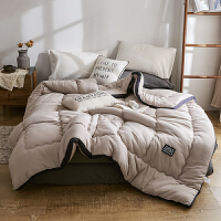 冬季加厚保暖水洗棉被子单人学生宿舍春秋被芯双人空调被褥