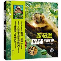 亚马逊森林的故事:亚马逊萌猴奇遇记