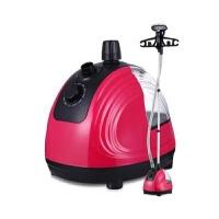 多功能熨衣机家用手持迷你立式蒸汽电熨斗挂烫机便携式蒸汽 1个