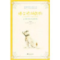 全球最经典的一百本少儿书:佛兰德斯的狗