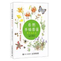 原野漫步 370种野花与88种昆虫的手绘自然笔记 植物图鉴书纸上重现秘密花园植物绘画教程书籍绘画爱好者阅读参考书籍