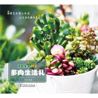 绿色生活DIY――多肉生活礼