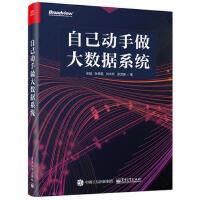 自己动手做大数据系统 分布式大数据系统开发视频教程书籍 大数据时代统计分析 数据库原理及应用 大数据存储分析书籍