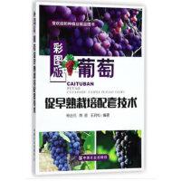 彩图版葡萄促早熟栽培配套技术