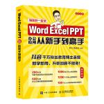 Word Excel PPT办公应用从新手到高手