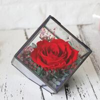 微景观玻璃花房保鲜花摆件diy礼盒奥斯汀永生花保鲜情人节生日 玻璃花房-红玫瑰
