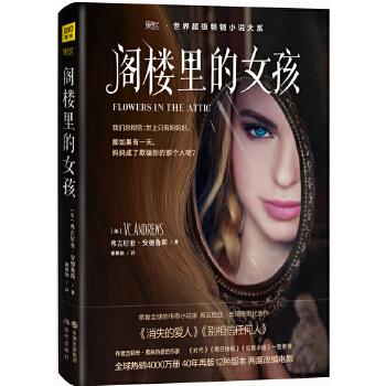 阁楼里的女孩(pdf+txt+epub+azw3+mobi电子书在线阅读下载)