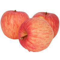 【山东特产】烟台苹果栖霞红富士 脆甜多汁 新鲜水果80#果 5斤包邮
