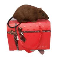 新款会叫灰色仿真老鼠假耗子模型整人小礼物吓人动物恶搞整蛊玩具 礼盒+
