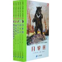 椋鸠十动物小说爱藏本(第一辑 共5册)