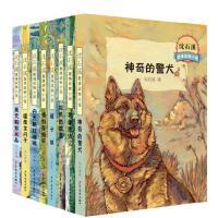 沈石溪激情动物小说系列(2017年新版,共8册)