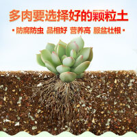 【支持�Y品卡】老花�r 有�C培�B土 ��_�N菜土�N花 通用有�C栽培基�|�I�B土5/6Lq9a