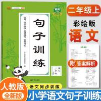 句子训练二年级上册 部编人教版小学语文同步专项训练100分