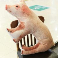 创意仿真母猪抱枕毛绒玩具女生娃娃靠枕小猪公仔生日礼物 抖音 仿真母猪 约75*40cm