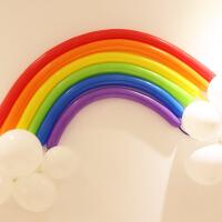 结婚庆用品婚房装饰品儿童宝宝生日派对布置彩色长条魔术气球 长条混色