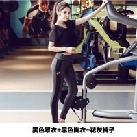 新款 韩国韩版瑜伽服套装女春夏长袖外套紧身长裤运动跑步紧身三件套